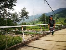 Hmong old woman walking on a wooden hanging bridge. Mu Cang Chai, Vietnam - Sep 16, 2016: Hmong old woman walking on a wooden hanging bridge from her village to Royalty Free Stock Images