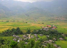 Hmong village between the rice fields in Sapa Stock Photography