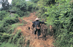 Hmong w południowo-zachodni Chiny Obrazy Royalty Free