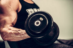 Hnadsome young man working out with dumbbells in fitness -  powe Stock Images