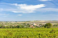 Hnanice και αμπελώνες, περιοχή Znojmo, της Δημοκρατίας της Τσεχίας στοκ φωτογραφίες