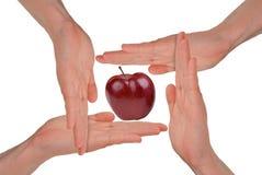 Hände der Frauen um einen Apple Lizenzfreie Stockfotografie