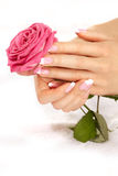 Hände mit einer Rose Lizenzfreie Stockfotografie