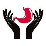 Händer med mänskligt magevektorsymbol Royaltyfria Bilder
