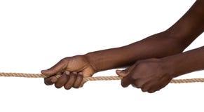 Händer som drar ett rep som isoleras på vit Arkivfoton