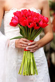 Händer som rymmer röda tulpan som gifta sig buketten Royaltyfri Bild