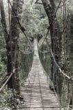 hänga för bro Arkivfoto