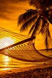 Hängematte auf einer Palme während des schönen Sonnenuntergangs auf Fidschi-Inseln Lizenzfreie Stockfotos