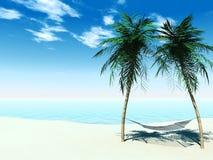 Hängematte zwischen palmtrees Lizenzfreie Stockfotos