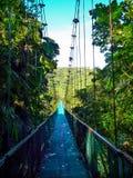 Hängende Brücke Stockfoto