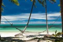 Hängmattan hängde mellan palmträd på en tropisk strand: Fotografering för Bildbyråer