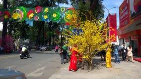 HO CHI MINH CITY, VIETNAM almacen de video