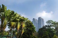 Ho Chi Minh City Vietnam, sikt till de moderna byggnaderna från parkera Royaltyfria Bilder