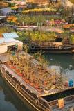 HO CHI MINH miasto WIETNAM, Jan, - 24, 2017: Ben Binh Dong kwiat f Fotografia Stock