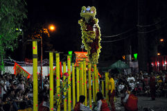 Dragon dance at Tet Lunar New Year Festival, Vietnam Stock Photography