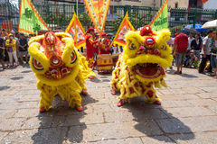 Ho Chi Minh, Vietnam - February 18, 2015 Lion dancing to celebrate Lunar New Year at Thien Hau Pagoda Stock Photos