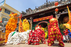 Ho Chi Minh, Vietnam - February 18, 2015 : Lion dancing to celebrate Lunar New Year at Thien Hau Pagoda Stock Photos