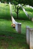 hołdu cmentarniany wojskowy Obraz Royalty Free