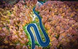 Ho för slingrig väg passerandet för högt berg för skog i Transylvania, royaltyfria foton