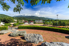 Ho Kham Luang - Flora Ratchaphruek real en la mañana soleada Fotos de archivo