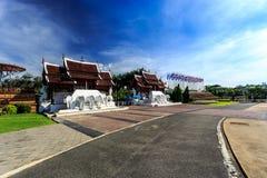Ho Kham Luang - Flora Ratchaphruek real en la mañana soleada Imagenes de archivo