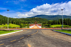 Ho Kham Luang - Flora Ratchaphruek real en la mañana soleada Foto de archivo