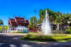 Ho Kham Luang - Flora Ratchaphruek reale alla mattina soleggiata Fotografia Stock Libera da Diritti