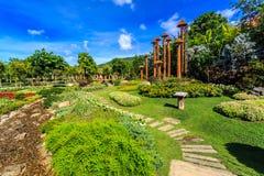 Ho Kham Luang - kungliga Flora Ratchaphruek på den soliga morgonen arkivbild