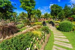 Ho Kham Luang - kungliga Flora Ratchaphruek på den soliga morgonen royaltyfria foton