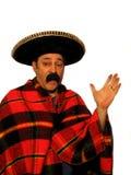 Ho La Lizenzfreies Stockbild