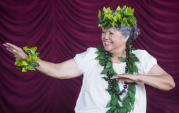 Ho'olaule'a Pacific Islands Festival Stock Images