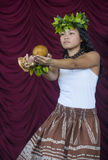 Ho'olaule'a Pacific Islands Festival Stock Image