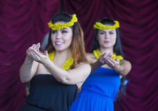 Ho'olaule'a Pacific Islands Festival Stock Photography