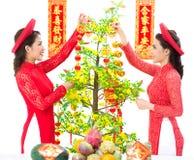Hoa Mai装饰 免版税库存照片
