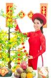 Hoa Mai Stock Images