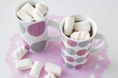 Hoad choklad med marshmallows Royaltyfria Foton
