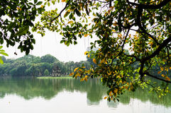 Hoan-Kiem sjö i höst Arkivbild