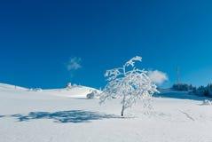 Hoar del invierno que hiela los árboles, la torre y las nieves acumulada por la ventisca MES cárpato Foto de archivo