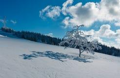 Hoar del invierno que hiela los árboles, la torre y las nieves acumulada por la ventisca MES cárpato Imagen de archivo