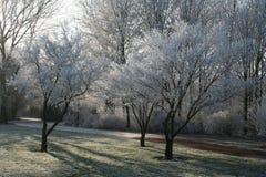 Hoar frost. A landscape with hoar frost in winter royalty free stock photo