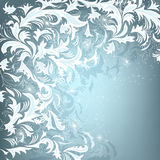 Hoar-frost. Beautiful winter background with hoar-frost motive Royalty Free Stock Photography