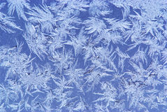 Hoar-frost background Royalty Free Stock Images