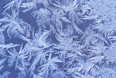 Hoar-frost background Stock Photos