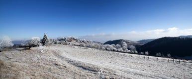 Hoar frost covered landscape Stock Image