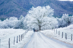 Hoar Frost in the mountains Royalty Free Stock Images