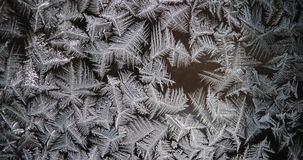 Hoar and frost patterns turn to the dew. Timelapse stock footage