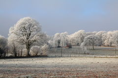 Hoar Frosty in the countryside Stock Photo