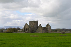 Hoare Abbey Ruins in a Lush Green Field Stock Image
