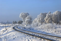Hoarfrost on branches. Railway turn. Royalty Free Stock Images