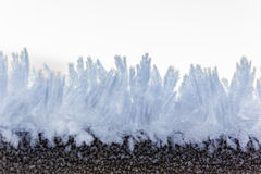 Hoarfrost closeup Royalty Free Stock Images